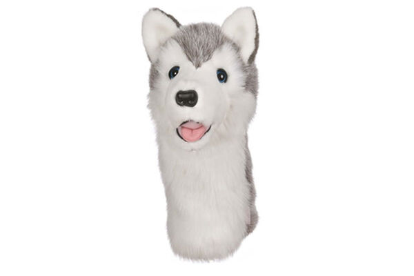 Daphnes Head Cover Husky