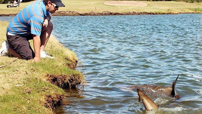 Carbrook Golf Course