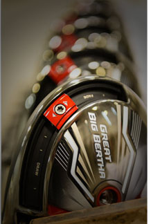 Great Big Bertha Beauty