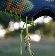 This is FootJoy FreeStyle -Video
