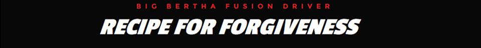 Callaway Big Bertha Fusion Info Header